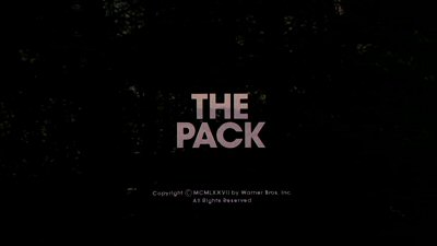 Header Critique : PACK, THE