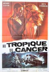 AU TROPIQUE DU CANCER - Poster